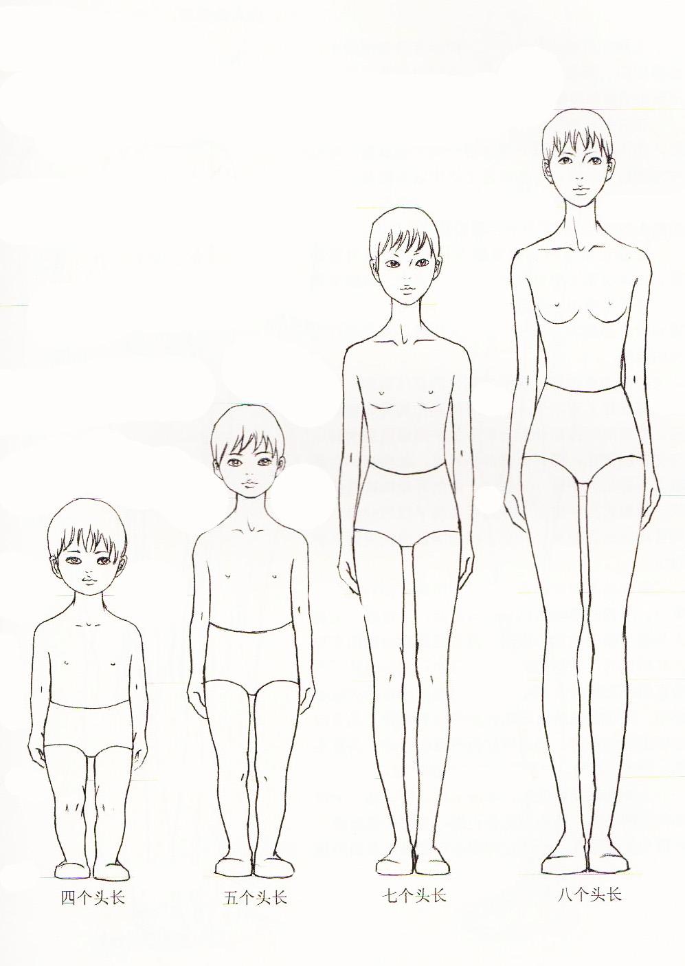 构成服装效果图造型的因素有两个方面:一是人体动态造型,二