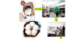 棉价一路高歌纺织鞋服企业陷入低谷
