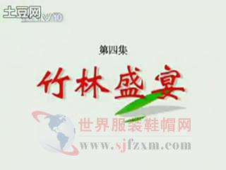 [百家讲坛]竹林七贤4竹林盛宴_mjpeg_mjpeg