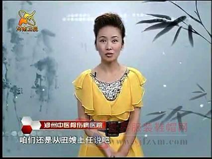【高清戏曲】《好戏天天看》2010-11-12豫剧《丑嫂》01