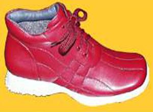 温州迪安鞋业有限公司