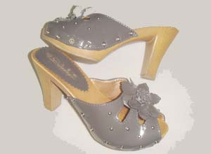 广东惠东艾莉娅鞋业有限公司